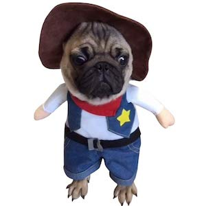 Cowboy Outfit for Dogs