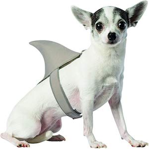 shark costume for small dogs