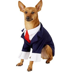 Rubie's Business Suit for Dogs