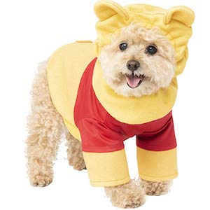 Cute Small Dog Costumes