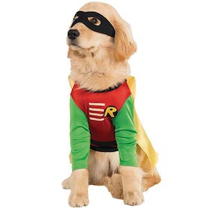 Rubie's Robin Pet Costume