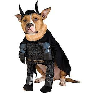 Rubie's Costume Batman The Dark Knight Rises