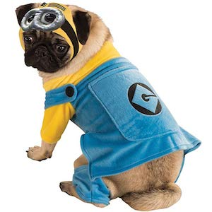 Minions Costume for Pugs