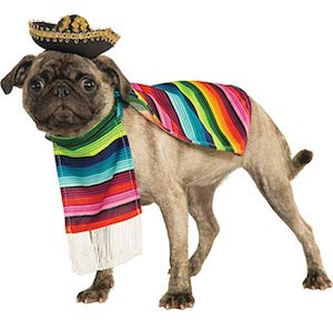 Mexican Serape Dog Costume