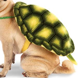Rubie's Turtle Shell Dog Backpack