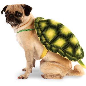 Rubie's Turtle Shell Pet Backpack