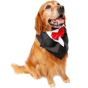 SGODA Dog Wedding Tuxedo