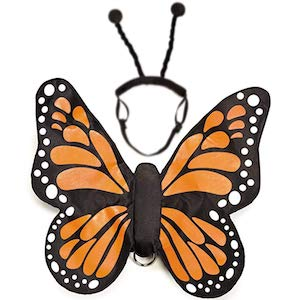 Zack & Zoey Butterfly Glow Costume for Dogs