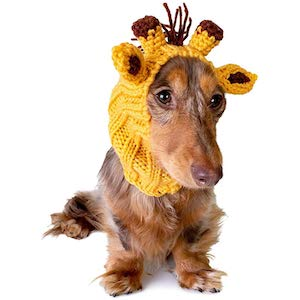 Zoo Snoods Giraffe Warmer Headband for Dogs