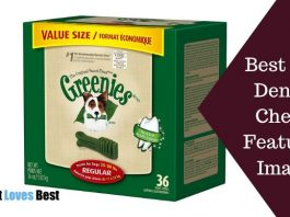 Best Dog Dental Chews Featured Image