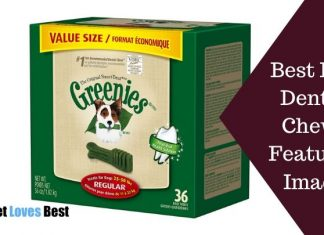 Best Dog Dental Chews Featured Image