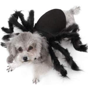 Idepet Pet Spider Halloween Costume for Dog