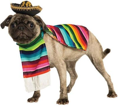 Mexican Serape Costume for Dogs