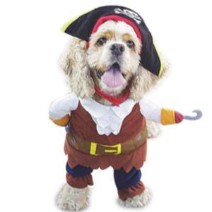 Pet Dog Costume Pirates of The Caribbean Style