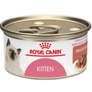 Royal Canin Kitten Canned Cat Food