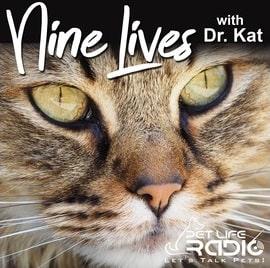 nine lives with dr. kat podcast