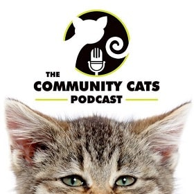 the coomunity cat podcast by stacy lebaron