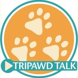 tripawd talk radio cat podcast