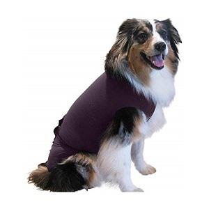 Best Dog Anxiety Wraps