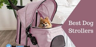 Best Dog Strollers Featured Image
