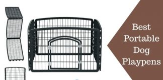 Best Portable Dog Playpens Featured Image