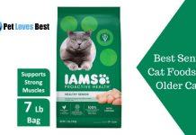 Best Senior Cat Foods For Older Cats Featured Image