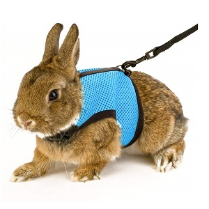 Calunce Small Animal Harness with Leash