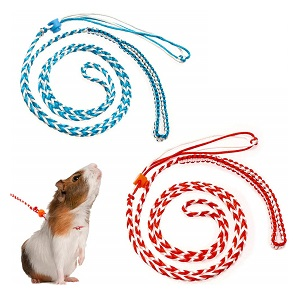 PAWCHIE Harness Leash for Ferret