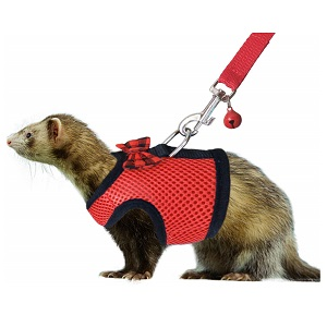RYPET Small Animal Harness and Leash