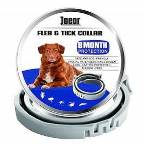 GORAUL Dog Flea Collar