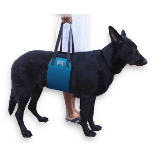 Blue Dog Lift Support Harness for Senior Dog