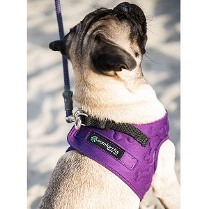 Comfort Fit Metric USA Small Dog Harness