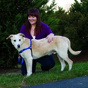 Easy Walk Harness by PetSafe