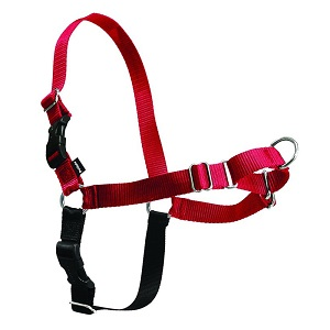 Easy Walk Harness by PetSafe
