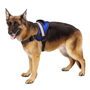 Expawlorer Big Dog No Pull Harness