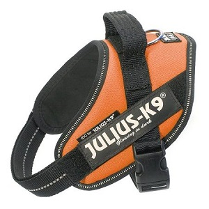 IDC Powerharness for Dogs from Julius-K9