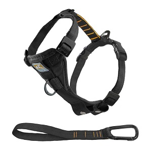 Kurgo Tru-Fit Harness with Seatbelt Tether for Car