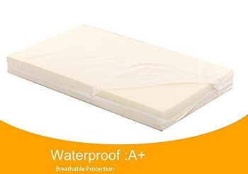 LaiFug Orthopedic Memory Foam Dog Bed- waterproof
