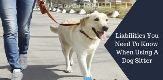 Liabilities You Need To Know When Using A Dog Sitter Featured Image