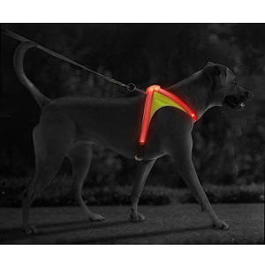 Noxgear Reflective Dog Harness with Multicolored LED