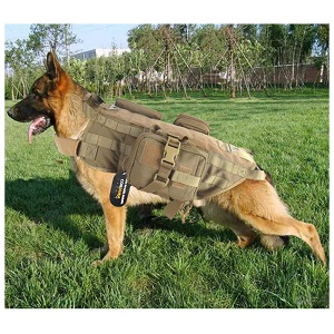 OneTigris Training Dog Vest