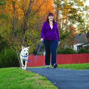 PetSafe Easy Walk Harness for walking
