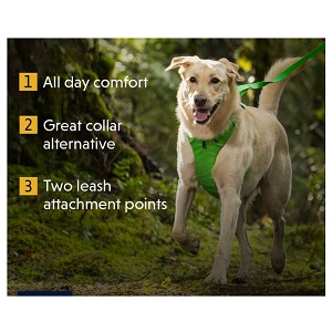 Ruff Wear Front Range Dog Harness for Adult Dog