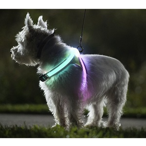 noxgear LightHound Revolutionary Illuminated and Reflective Harness