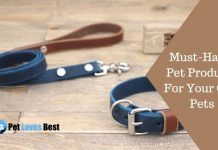 Must-Have Pet Products Featured Image