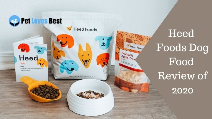 Heed Foods Dog Food Review of 2020 Featured Image