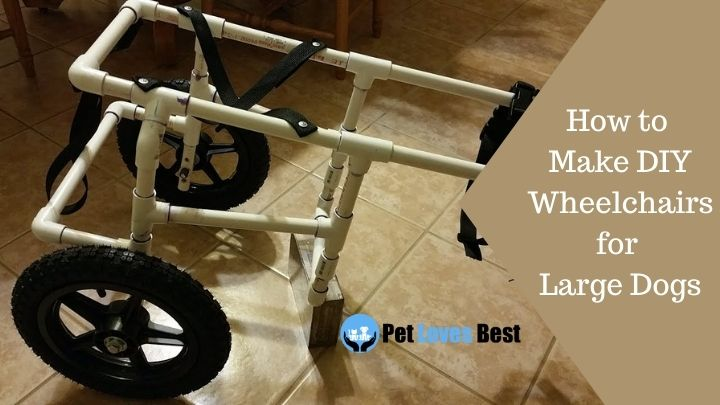How to Make DIY Wheelchairs for Large Dogs Featured Image
