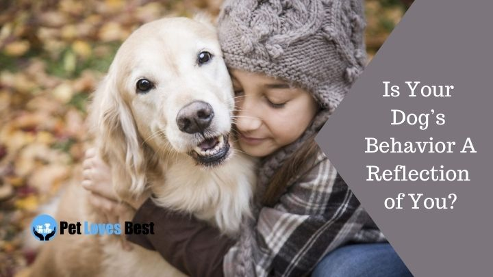 Is Your Dog's Behavior A Reflection of You Featured Image