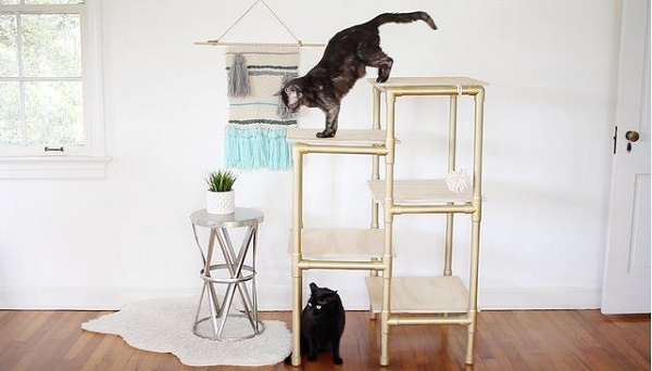 cat furnitre made up of pvc piping