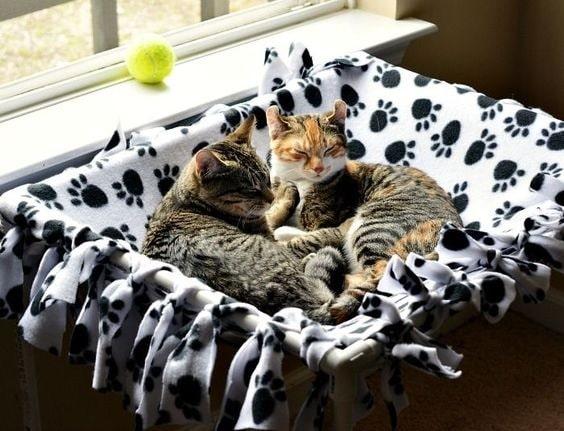 cat hammocks made up of pvc piping